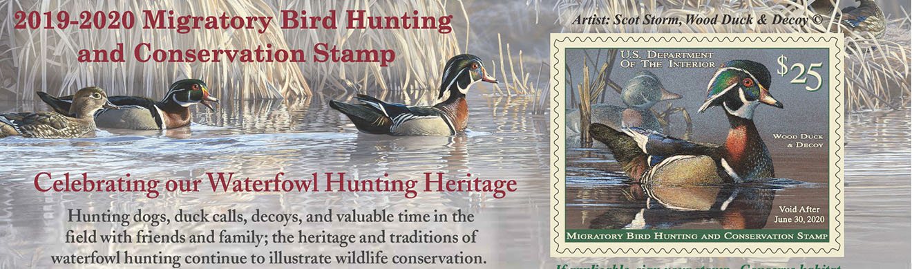 2019 Duckstamp