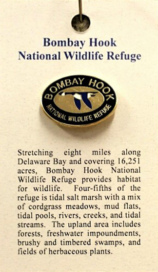 Bombay Hook Oval Lapel Pin